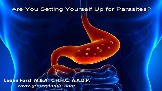 Are You Setting Yourself Up for Parasites?