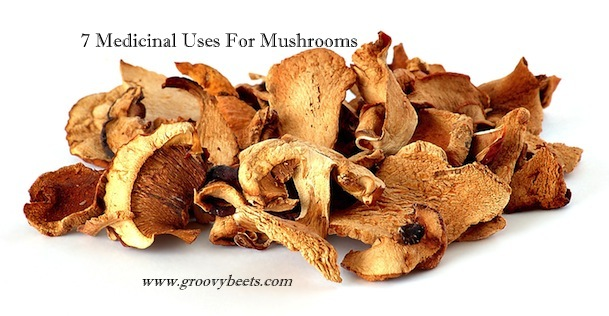7 Medicinal Uses For Mushrooms