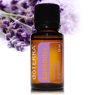 doTERRA Lavender Essential Oil | GroovyBeets.com