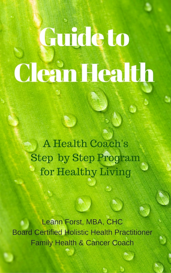 Guide to Clean Health | GroovyBeets.com