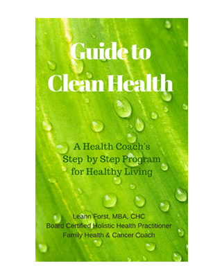 Guide to Clean Health eBook Cover