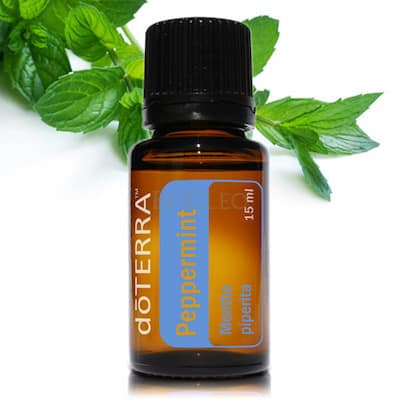 doTERRA Peppermint Essential Oil | GroovyBeets.com