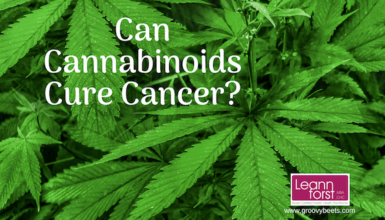 Can Cannabinoids Cure Cancer? | GroovyBeets.com
