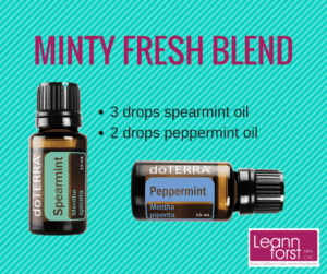 Minty Fresh Diffuser Blend | GroovyBeets.com