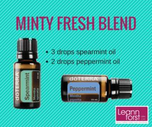 Minty Fresh Diffuser Blend | GroovyBeets.com