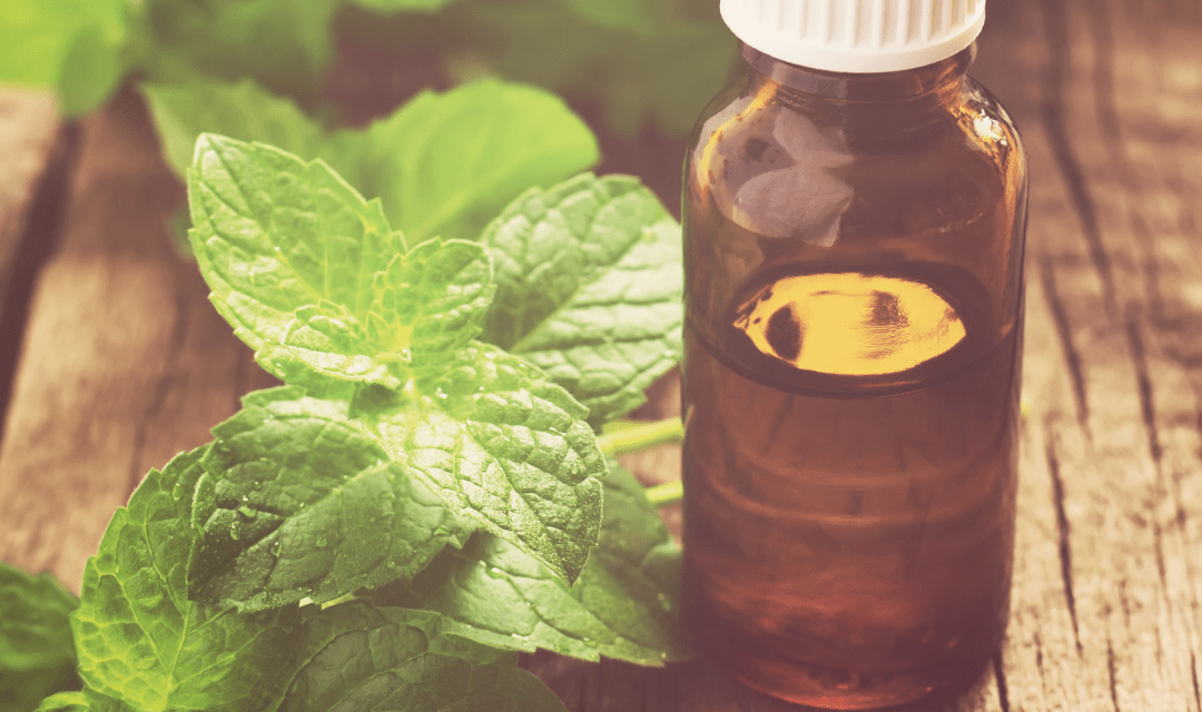 Health Benefits of Peppermint Essential Oil