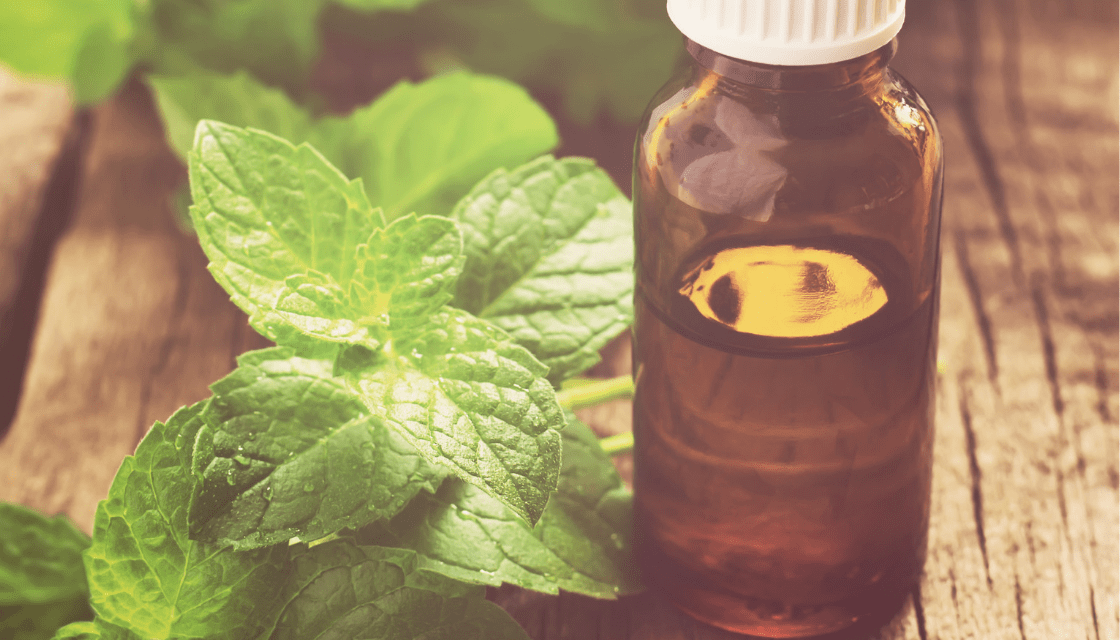 Health Benefits of Peppermint Essential Oil | LeannForst.com