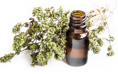 6 Health Benefits of Thyme Essential Oil