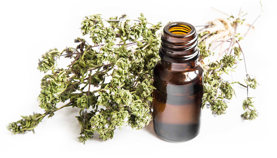 Health Benefits of Thyme Essential Oil | LeannForst.com