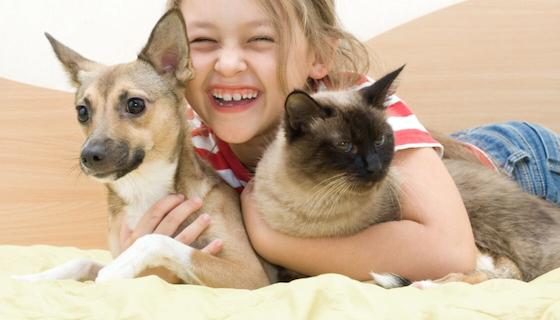 Essential Oils & Pets | LeannForst.com