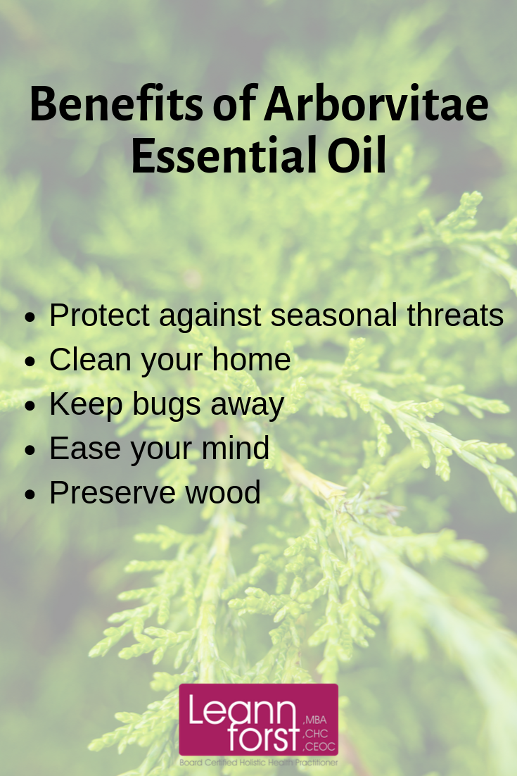 Benefits of Arborvitae Essential Oil | LeannForst.com