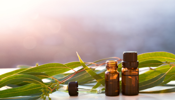 Essential Oils for Cellular Health | LeannForst.com