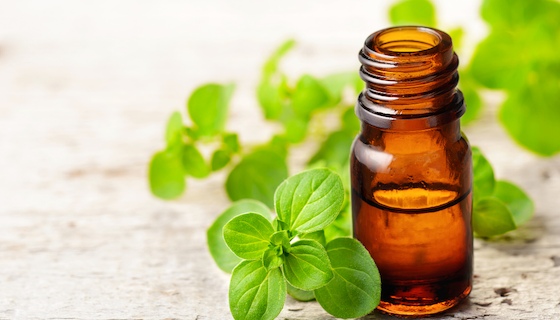 Benefits of Marjoram Essential Oil | LeannForst.com